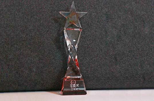 青年创业大赛-玉蕾奖杯